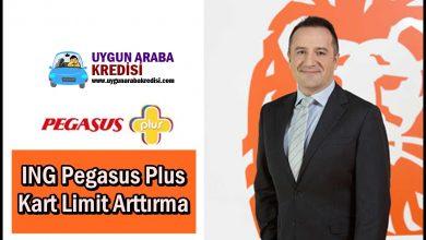 ING Pegasus Plus Kart Limit Arttırma